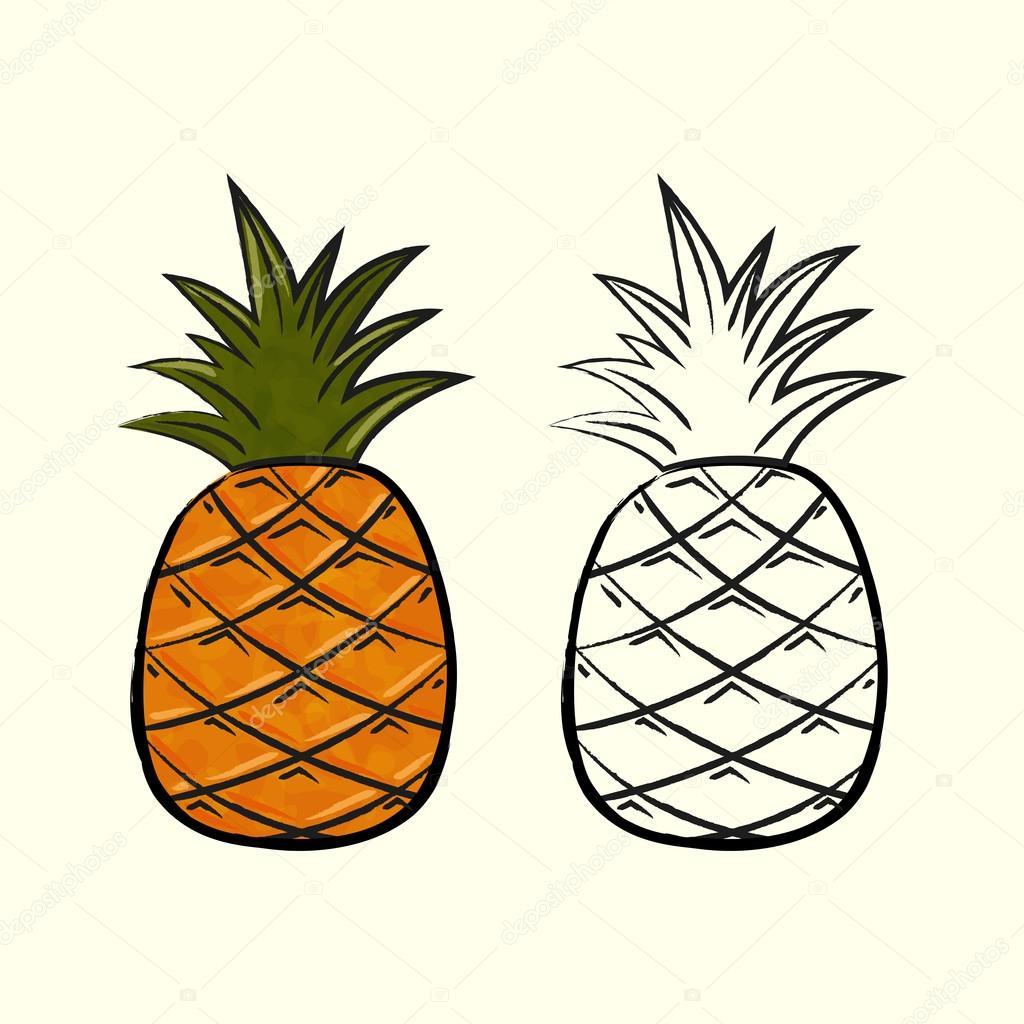 1024x1024 Pineapples Stock Vector Hanova