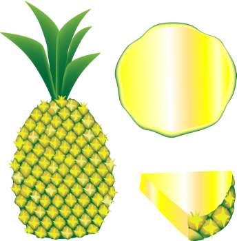 344x350 Sliced Pineapple