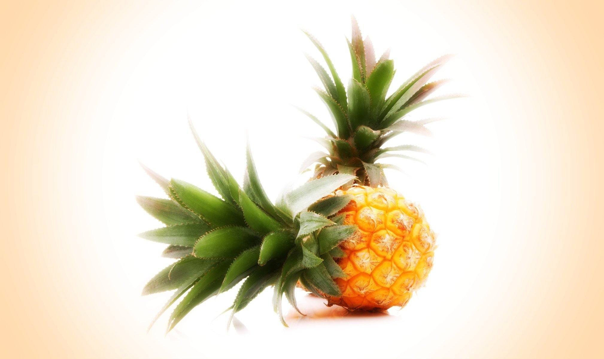 Amazing Wallpaper Macbook Pineapple - pineapple-wallpaper-tumblr-16  Best Photo Reference_628957.jpg