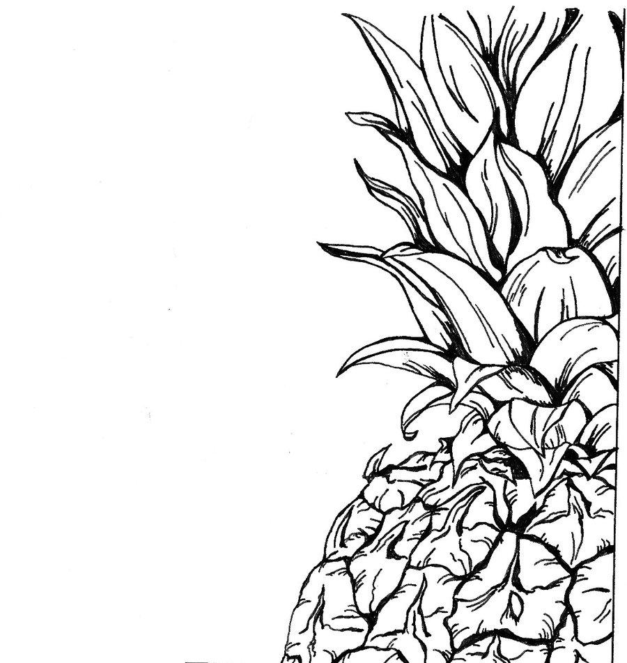 900x951 Pineapple Wallpaper Tumblr Clipart Panda