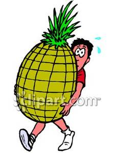 225x300 Man Carrying A Huge Pineapple Royalty Free Clipart Picture