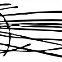 200x200 Pine Needles Clipart