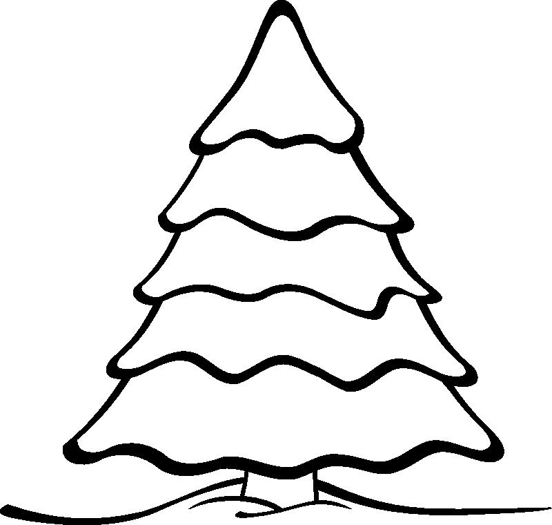 800x760 Pinecone Clip Art