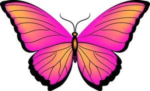 300x182 Clipart Butterfly Clip Art Clipart Panda
