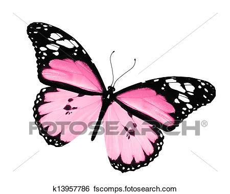 450x380 Stock Illustration Of Pink Butterfly, Isolated On White Background