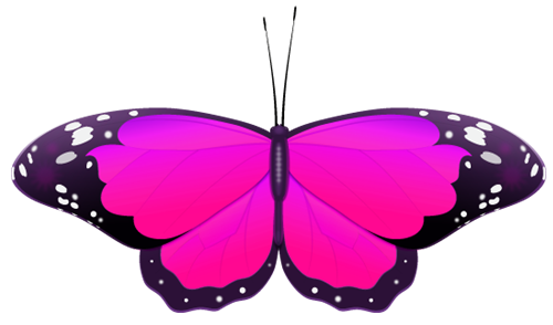 500x294 Pink Butterfly Clip Art Cliparts