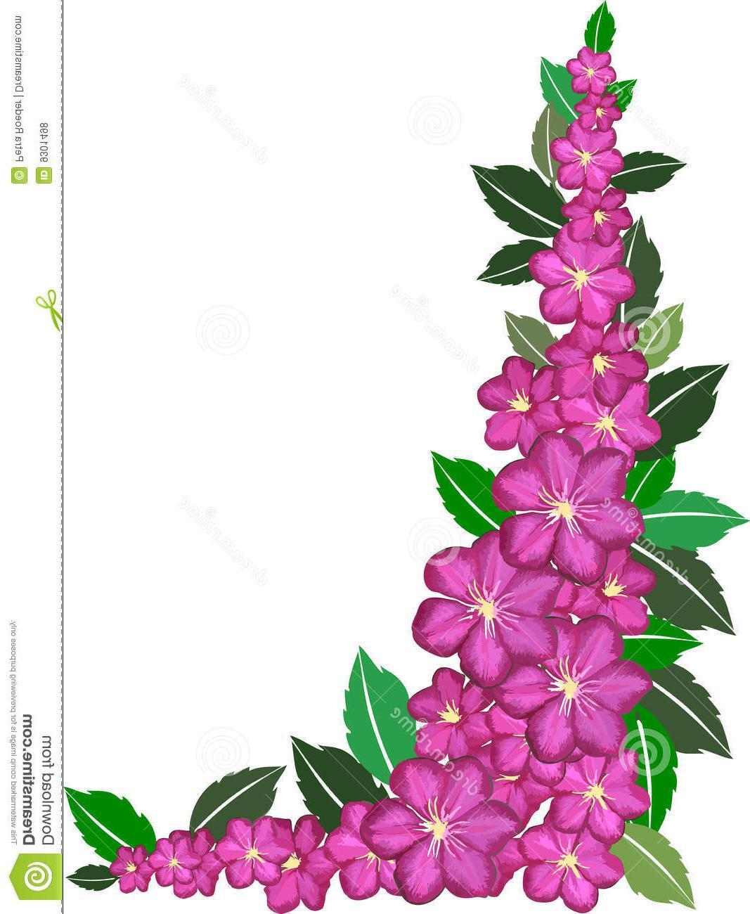 Pink Flower Borders