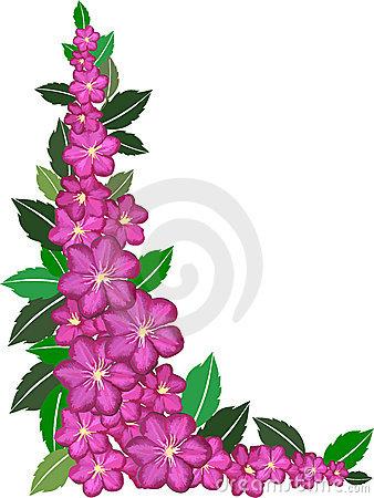 338x450 Pink Flower Clipart Flower Boarder