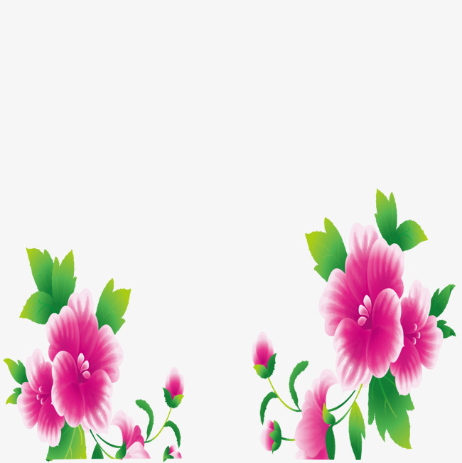 650x651 Pink Flower Borders, Flowers, Frame, Pink Png And Vector For Free
