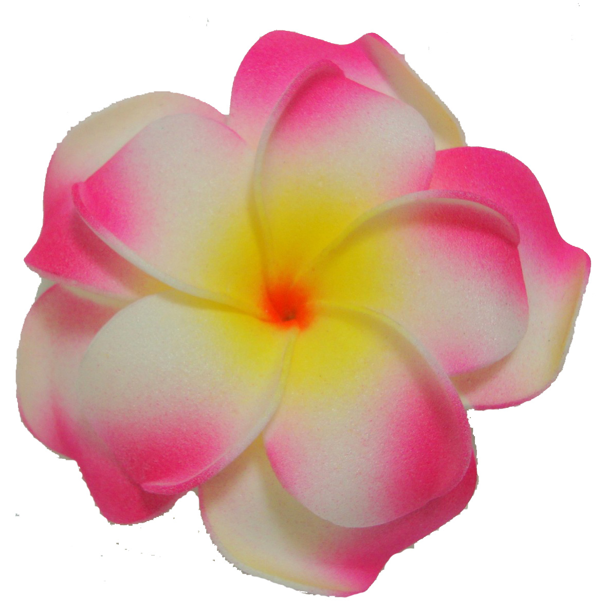 Pink Flower Clipart Free Download Best Pink Flower Clipart On