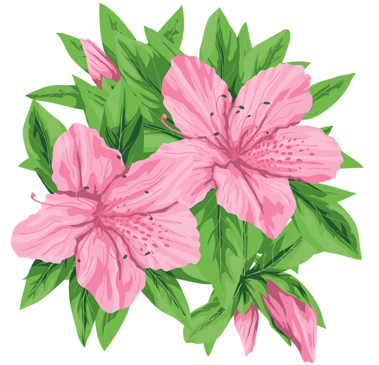 1270x1223 Pink Flowers Png Clip Art Imageu200b Gallery Yopriceville