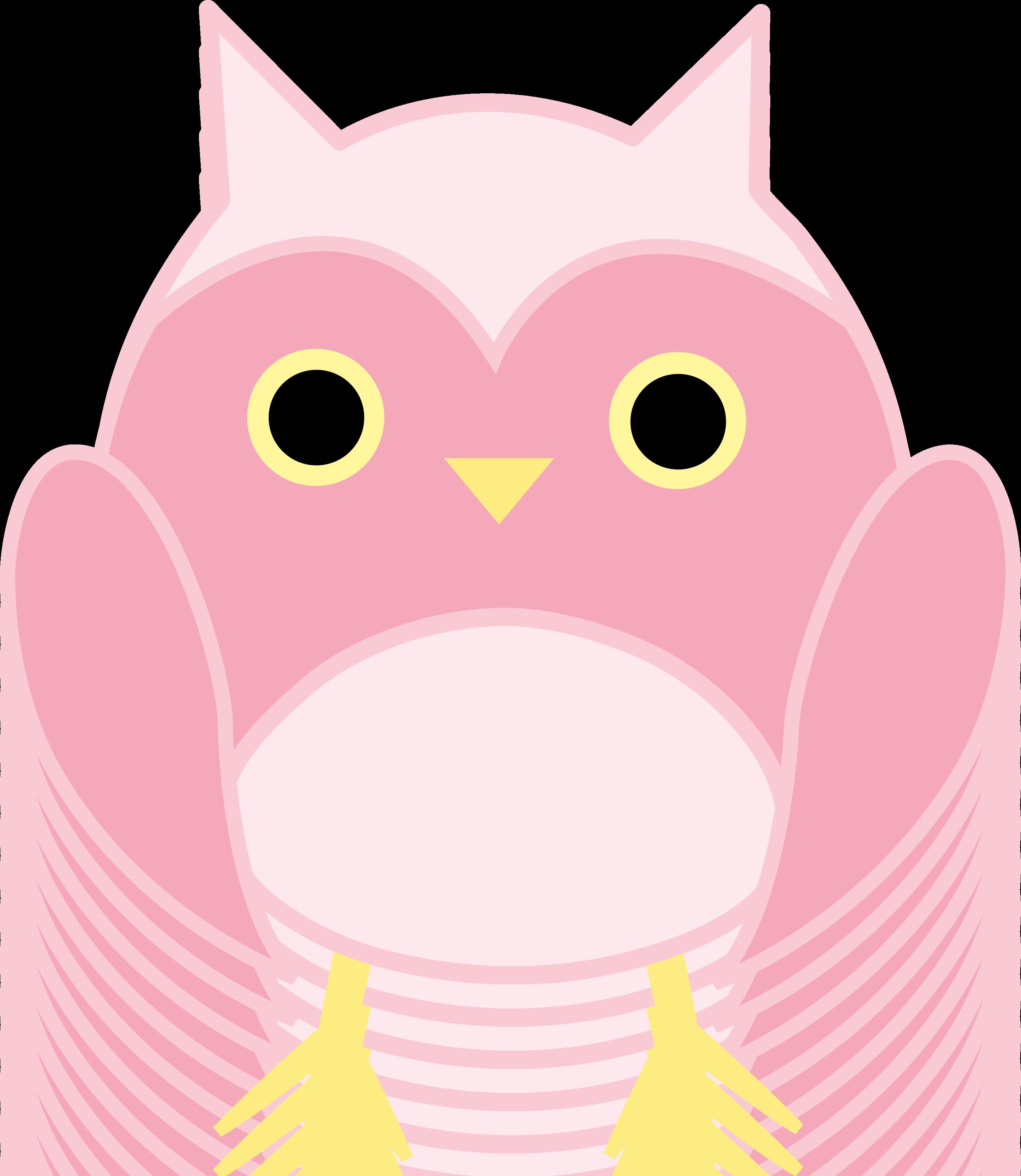 2802x3228 Cute Pink Owl