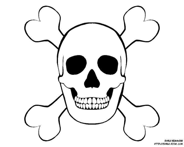 picture about Printable Pirate Hats named Pirate Pictures Free of charge Absolutely free down load suitable Pirate Photos Absolutely free