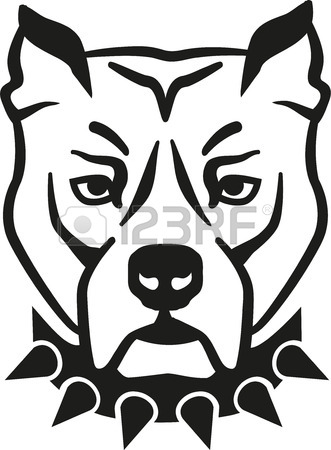 331x450 433 Pit Bull Head Stock Vector Illustration And Royalty Free Pit