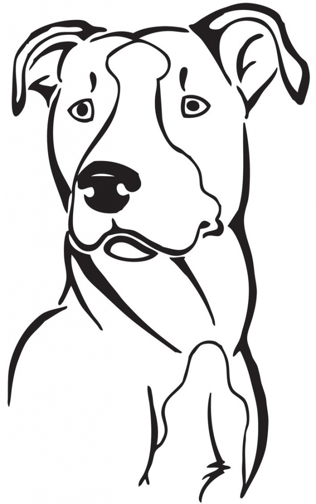 643x1024 Pitbull Clipart Sketch