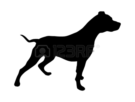 450x338 1,303 Pit Bull Stock Illustrations, Cliparts And Royalty Free Pit