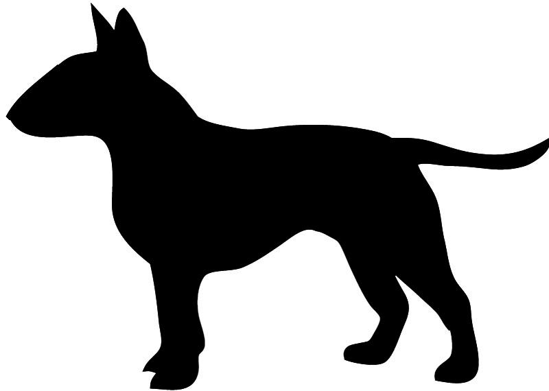 800x570 Bull terrier clipart