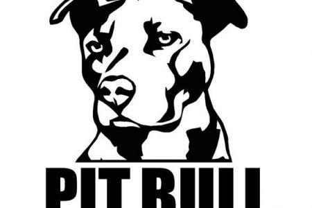 450x300 Pit Bull Clip Art Clipartsco, Pitt Logo Clip Art
