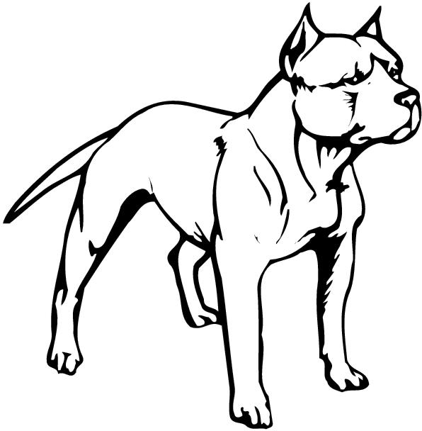 596x608 Pit Bull Clipart Black And White