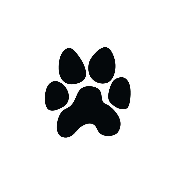 736x777 Best Paw Print Clip Art Ideas Paw Print Drawing