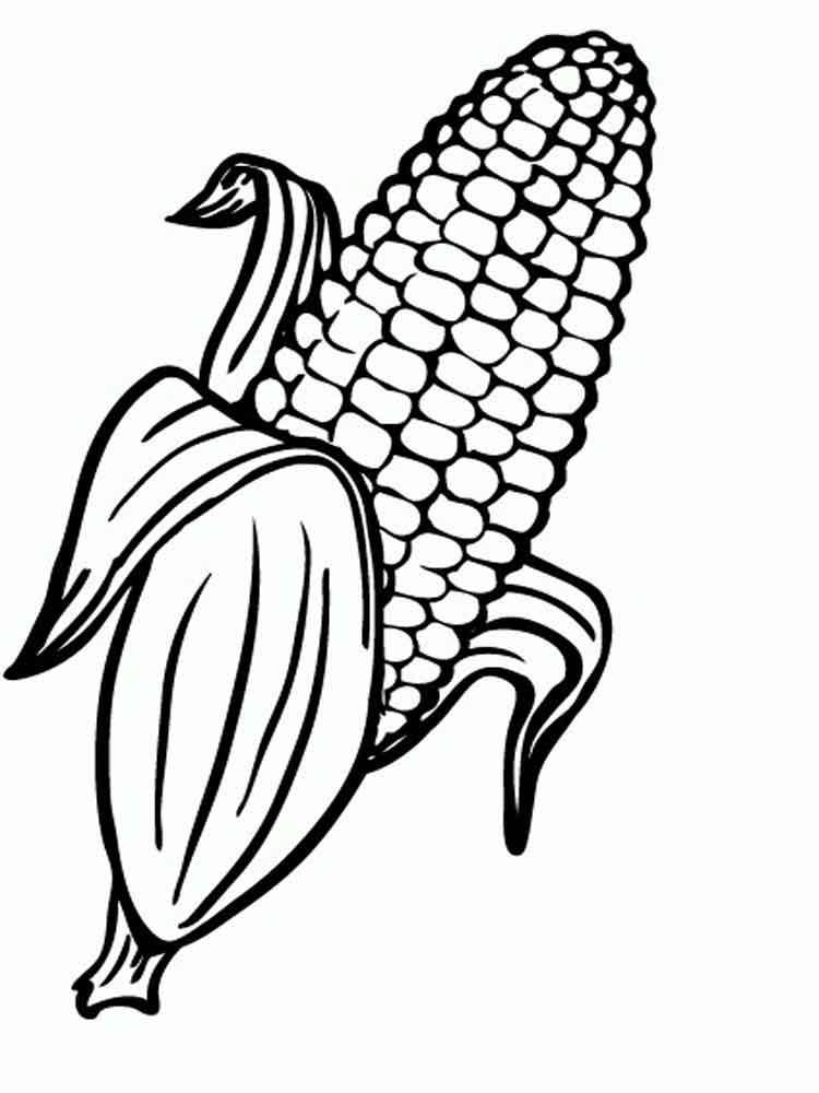 750x1000 Corn Color Page
