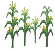 236x209 Green Corn Clipart, Explore Pictures