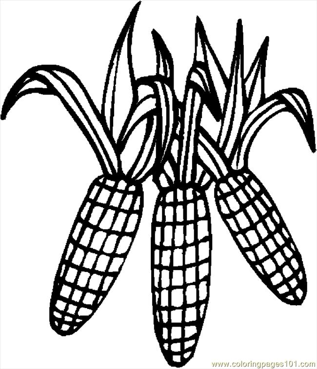 650x757 Indian Corn Coloring Page 430324