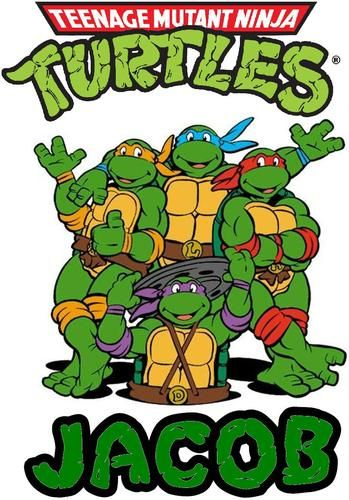 349x500 183 Best Tmnt Birthday Party Images 4th Anniversary