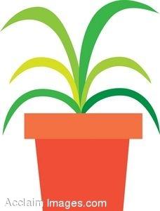 228x300 Clip Art House Plant Clipart