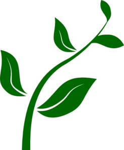 246x299 Growing Plant Clip Art