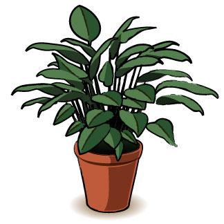 324x324 Plant Clip Art