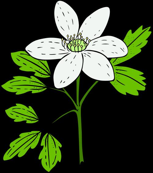 500x562 Plant Clipart Clip Art Plants Paint Clipart Tiny 2