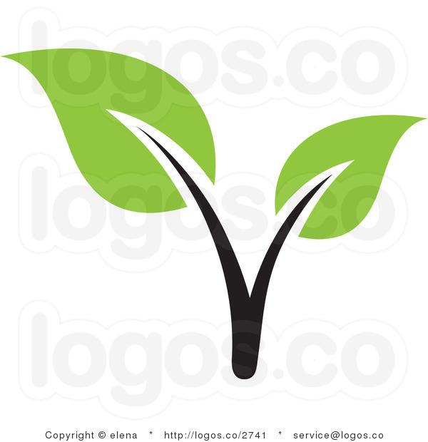 600x620 Seedling Clip Art Clipart