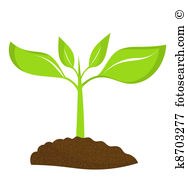 187x179 Young Plant Clipart