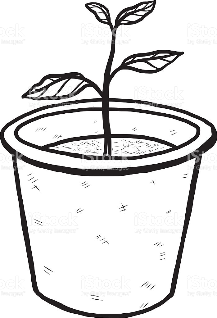 plant clipart black and white free download best plant
