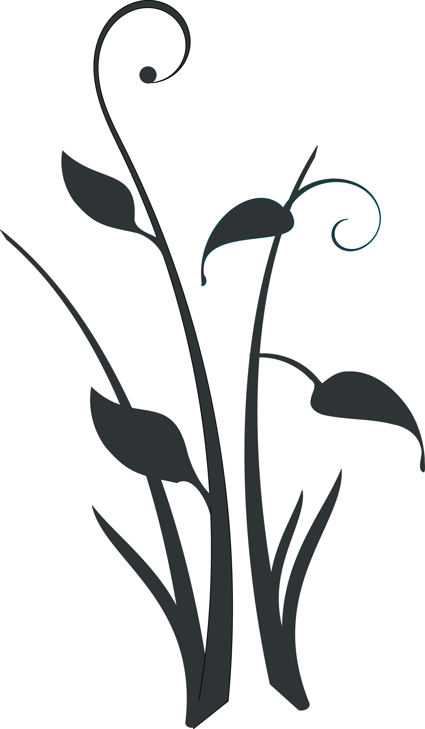Plant Clipart Black And White   Free download best Plant ...