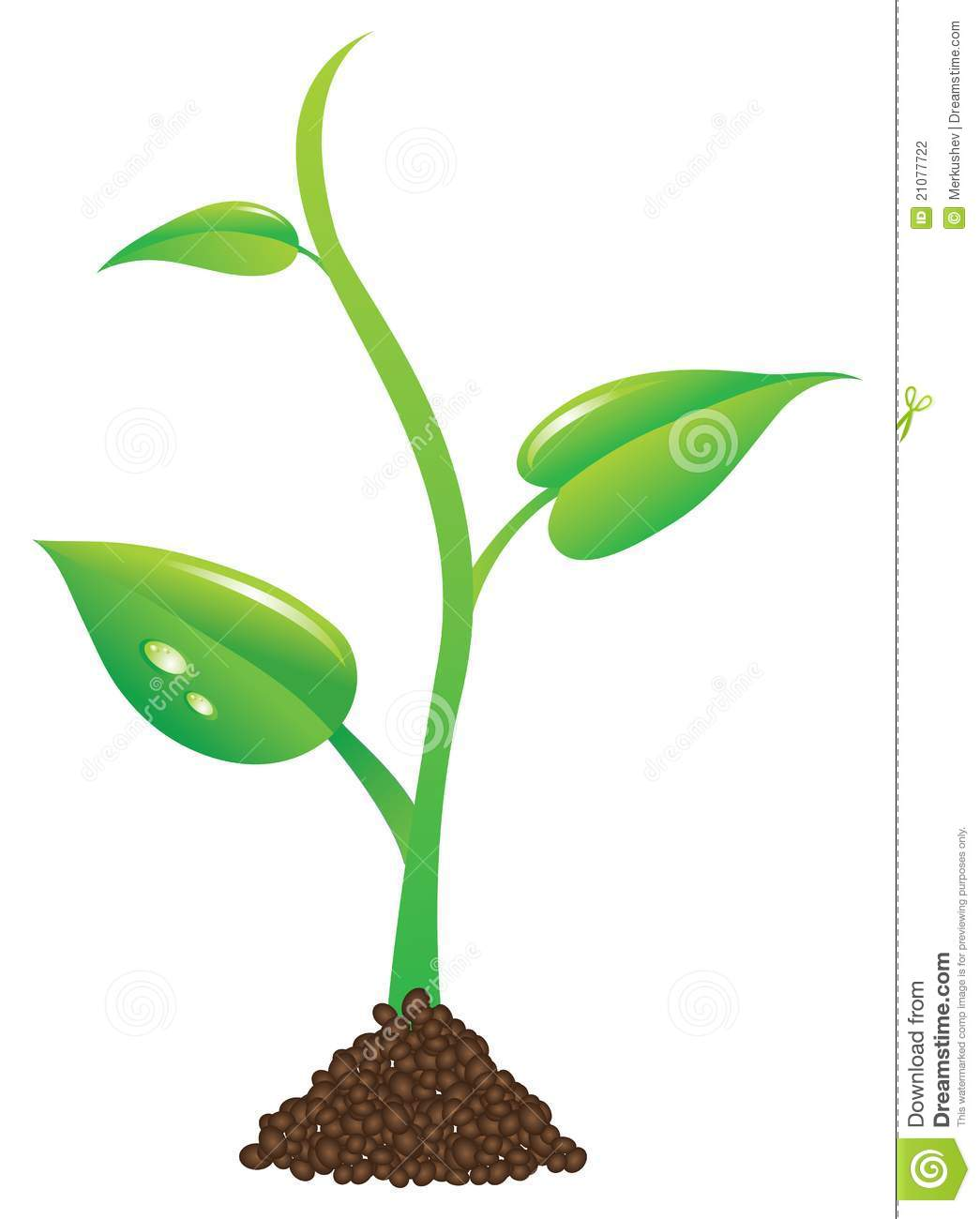 1045x1300 Green Plant Clipart