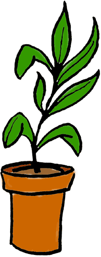 200x505 Potted Plant Drawing Clipart Panda