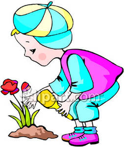 253x300 Flower Planting Clipart
