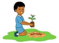 195x141 Free Gardening Clipart