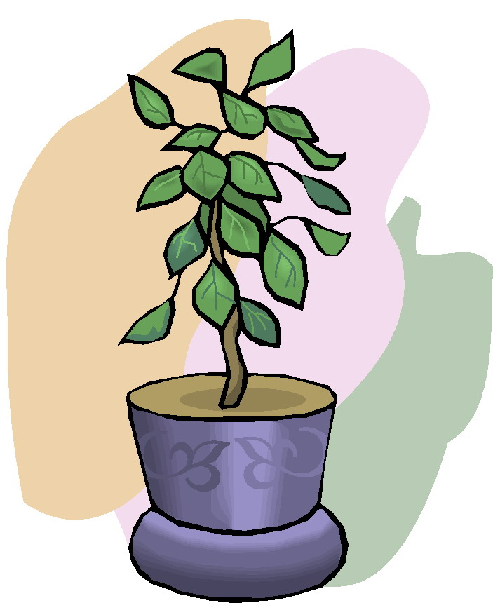 703x860 Plant Clipart Clip Art Plants Paint Clipart Tiny