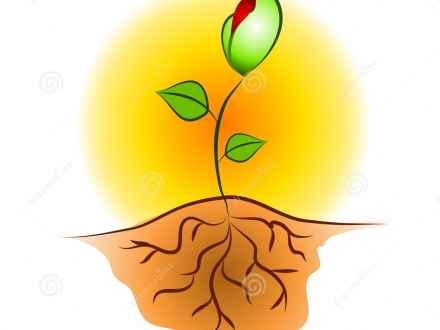 440x330 Tree Planting Clip Art