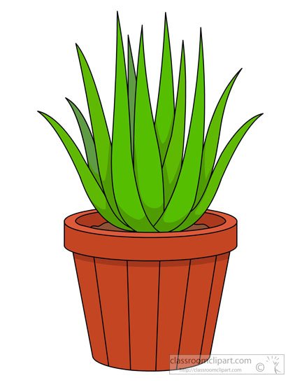 422x550 Clipart Plant