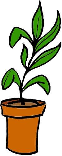 200x505 Plant Cartoon Clip Art Clipart