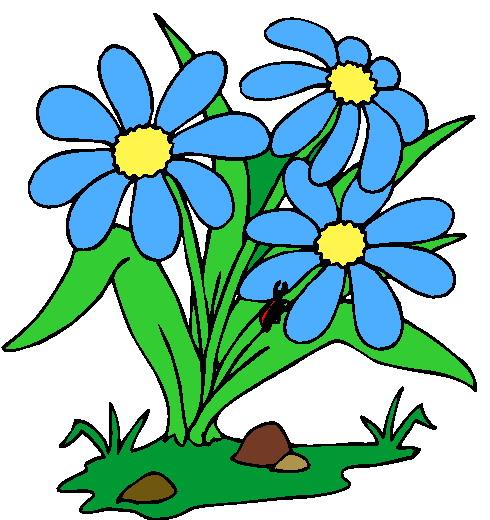 490x520 Flower Plants Clipart