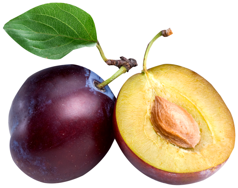 819x646 Large Plum Png Clipartu200b Gallery Yopriceville