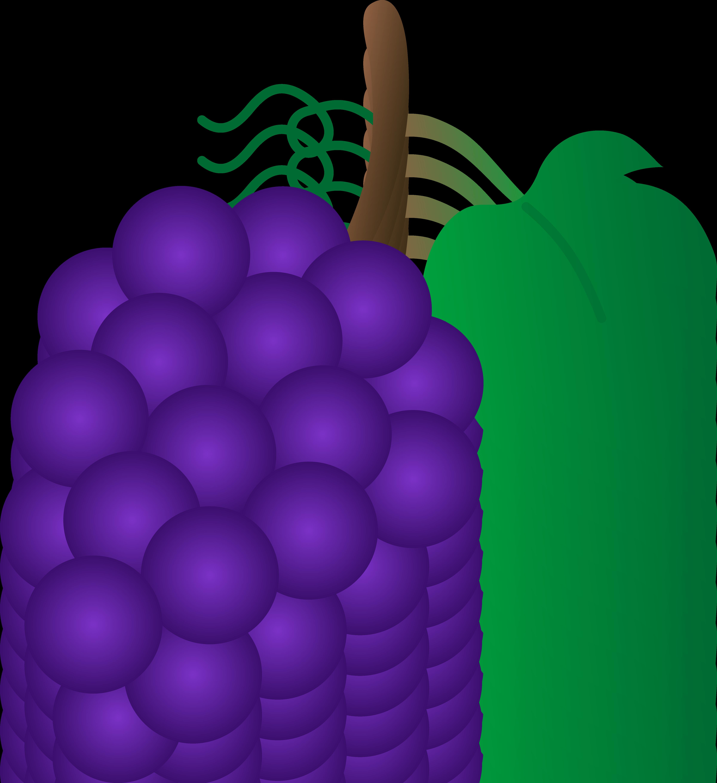 4801x5243 Plum Clipart Single Grape