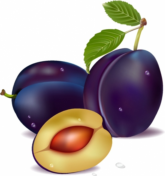 561x600 Plums Clipart