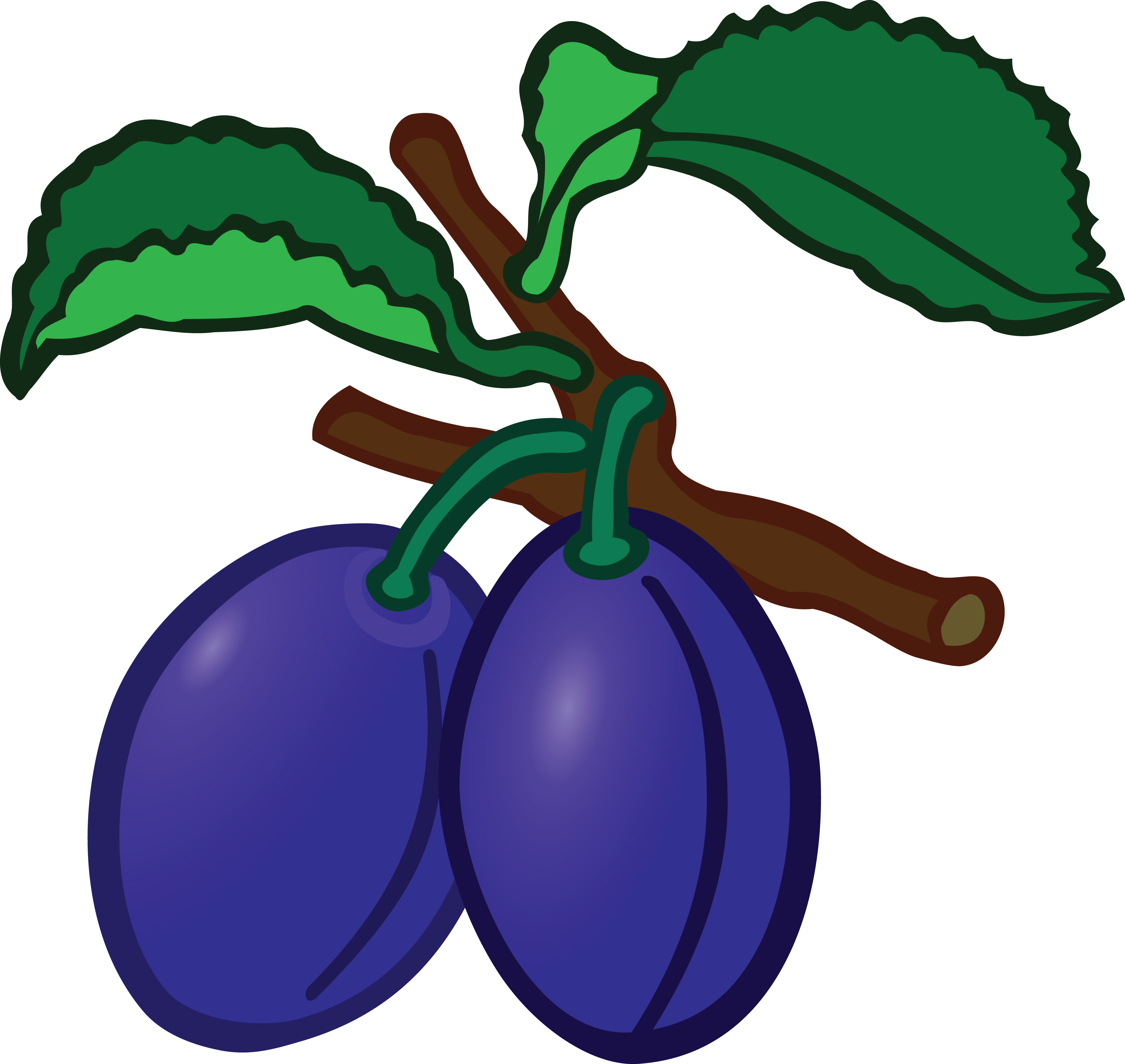 4000x3785 Clipart Of Plums