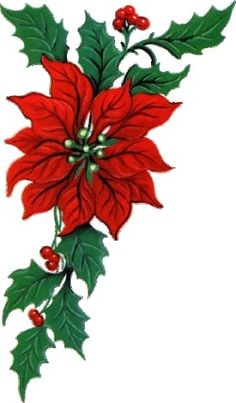 236x403 Poinsettia Clipart Christmas Flower